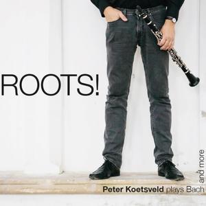 Peter Koetsveld clarinet